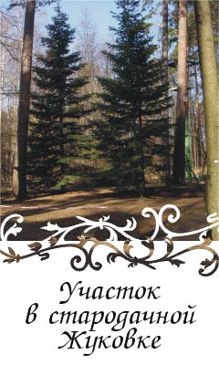 Лесной участок в охраняемой стародачной Жуковке. Инфраструктура Рублево-Успенского шоссе
